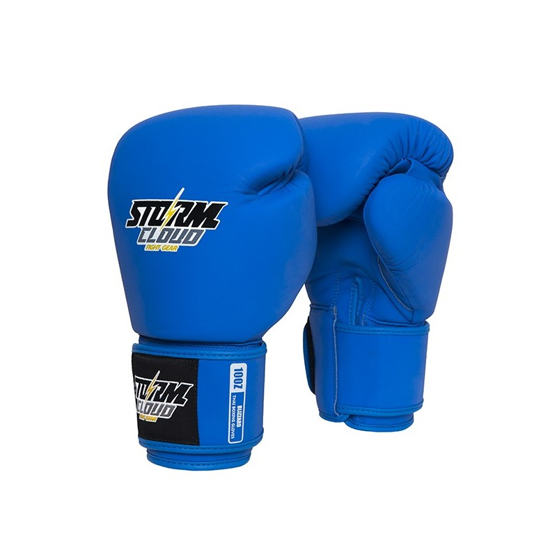 Rękawice do treningu - MMAniak BLOG